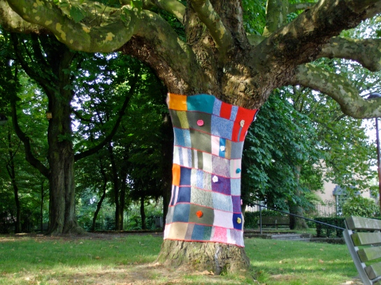 Have you ever seen a tree with a sweater on?