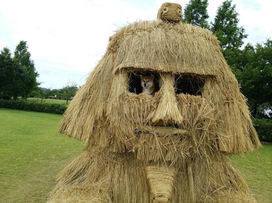 The Straw Art of Japan